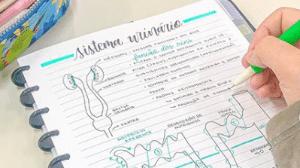 Conhece studygrams? | Como usar os perfis do Instagram para estudar para o Enem 2019