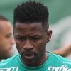 Cesar Greco/Ag. Palmeiras/Digulgação