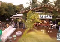 Reprodução/YouTube/Harmonia Samba