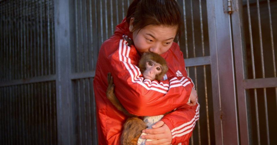 28. jan. 2016. O Ano-Novo chinês em 2016 será comemorado no dia 8 de fevereiro. Este será o ano do macaco