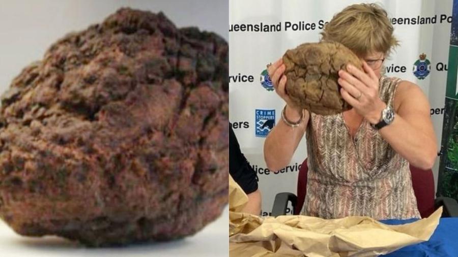 A rocha espacial teria ficado no jardim do acusado por cinco anos - Reprodução/The Crystal Caves /Wikicommons /Polícia de Queensland