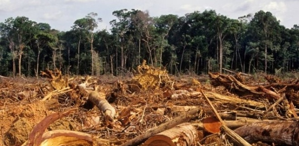 Desmatamento da Amazônia, em foto de 2007; floresta brasileira perdeu 20% de sua área desde 1970 - Getty Images