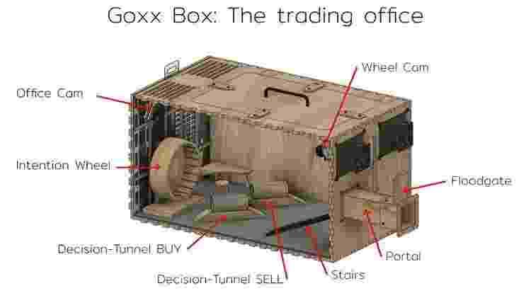 Gaiola de hamster investidor possui sistema eletrônico que registra suas decisões - Reprodução/Goxx Capital - Reprodução/Goxx Capital
