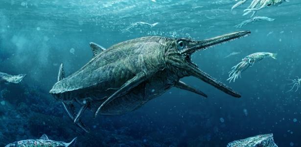 Paleontólogos o identificaram como ictiossauro, família de répteis marinhos extinta desde então