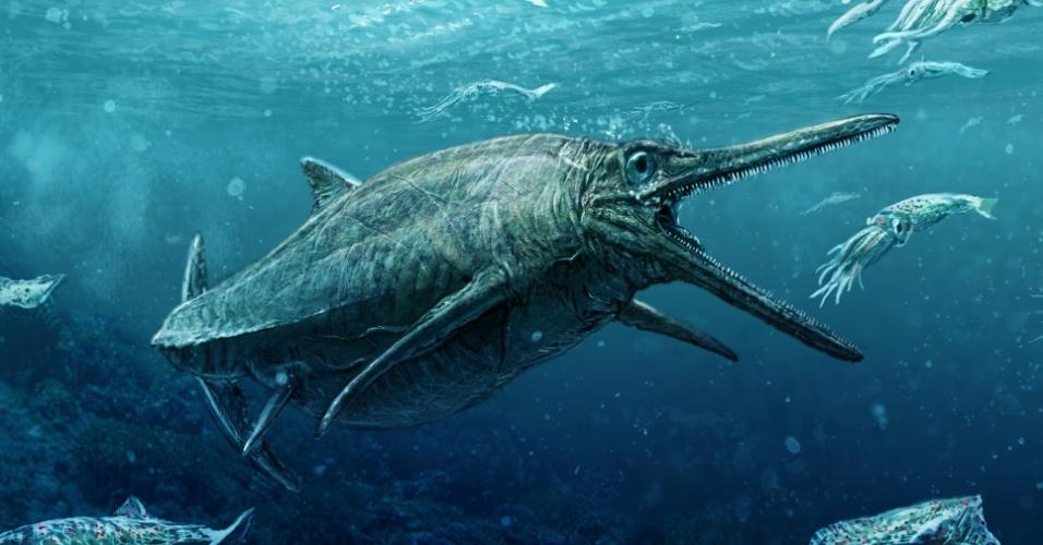 """5.set.2016 - O monstro marinho do lago Storr, que viveu há 170 milhões de anos, saiu do anonimato meio século depois de sua descoberta. O fóssil desta criatura do Jurássico com ventre volumoso, olhos esbugalhados e uma cabeça com um grande bico dotado de centenas de dentes, foi descoberto em 1966 na ilha escocesa de Sky. Mas """"durante meio século o museu [nacional da Escócia] o manteve resguardado porque não possuíamos as técnicas necessárias para soltá-lo da imensa rocha que o envolvia e, assim, poder estudá-lo"""", explicou Steve Brusatte da Universidade de Edimburgo. Agora, Nigel Larkin, especialista restaurador de fósseis, liberou o monstro da rocha na qual estava preso há milhões de anos"""