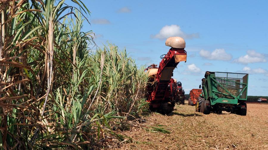 Produção agrícola deve fechar o ano na marcas de 250 milhões de toneladas - Valter Campanato/Agência Brasil