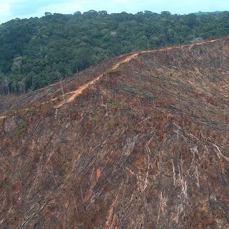 4.out.2018 - Imagem do Ibama mostra desmatamento em fazenda - Divulgação/Ibama