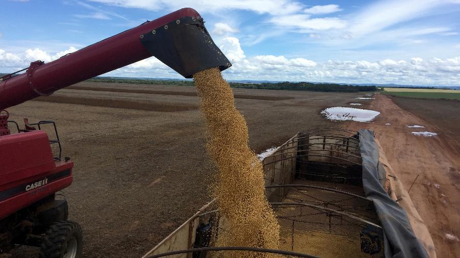 Colheita de soja em Porto Nacional (TO) - Roberto Samora