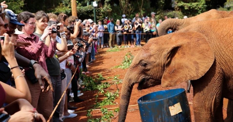 10.jan.2016 - Turistas olham e fotografam filhotes de elefante em orfanato dedicado aos paquidermes em Nairóbi, no Quênia