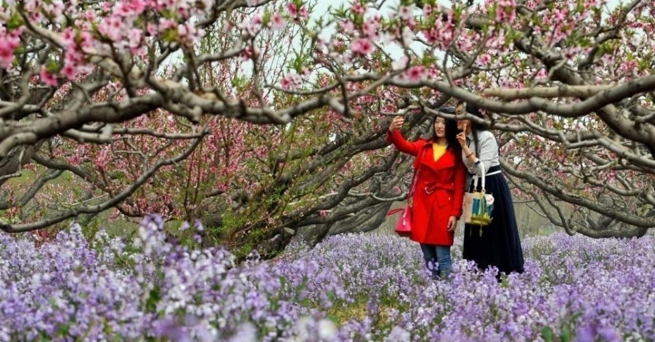 13.abr.2016 - Visitantes fazem selfie sob as flores de pêssego em Hougang, na China