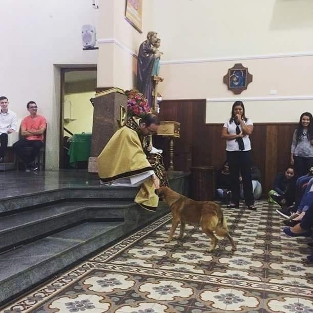 4.jun.2016 - Padre da Paróquia São José Operário, em Sorocaba (SP), ganhou fama após postar uma foto em que recebe um cachorro