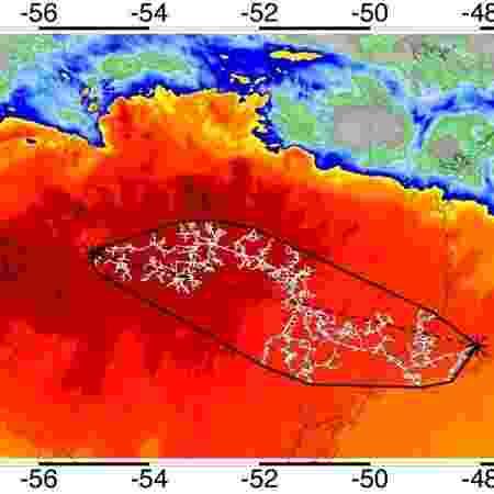 raio - Divulgação/Organização Meteorológica Mundial - Divulgação/Organização Meteorológica Mundial