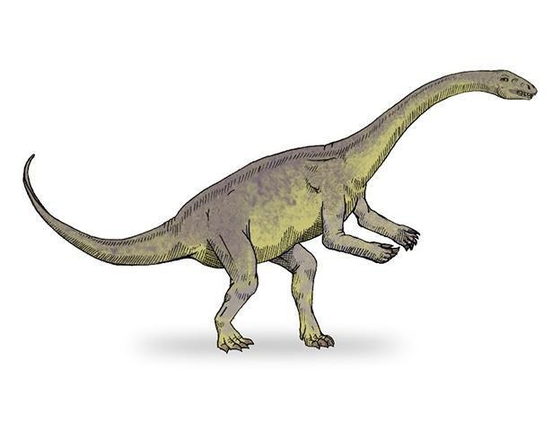 31.jan.2017 - Lufengossauro