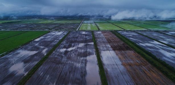 Terra preparada para o plantio de soja em uma fazenda em Miranda, região alagada do Pantanal - Lalo de Almeida/The New York Times