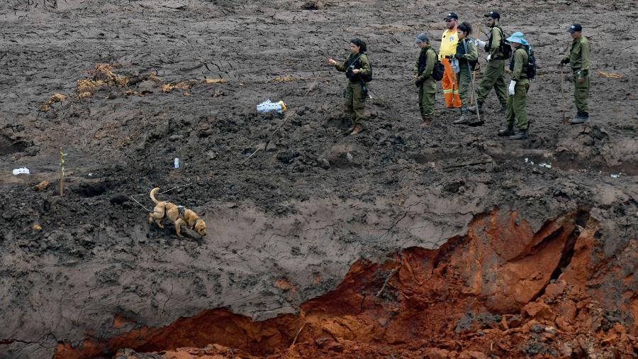 Militares israelenses buscam por vítimas em Brumadinho (MG) após o rompimento de uma barragem da mineradora Vale - Washington Alves/Reuters