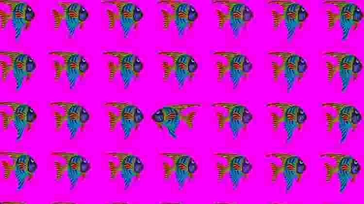 ILustração - peixes cardume um peixe no sentido contrário - Dean Moriarty/ Pixabay - Dean Moriarty/ Pixabay