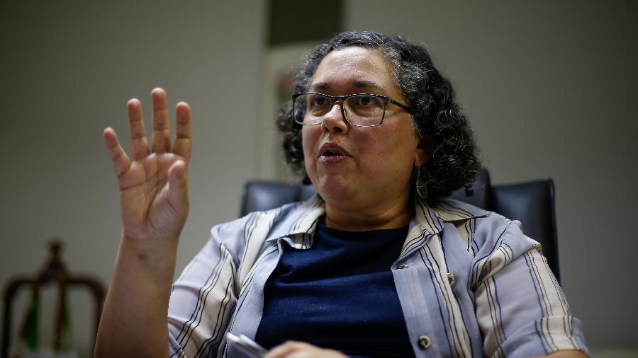 """Suely Araújo, ex-presidente do Ibama, disse que a Câmara votou """"a Lei da Não Licença e do Auto licenciamento"""" - Pedro Ladeira/Folhapress"""
