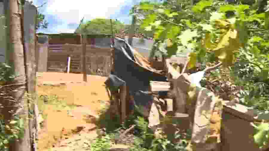 Quatro motoristas são mortos na periferia de Salvador - Reprodução/TV Globo