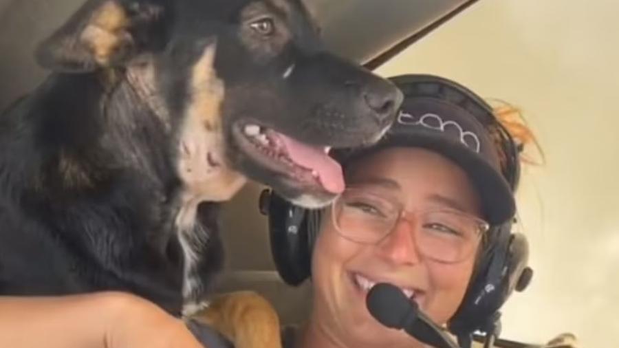 Animais foram transportados de avião do estado do Alabama até a Flórida - Reprodução/ TikTok