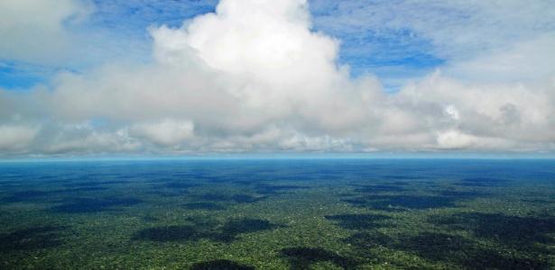 ONU acredita que as propostas no Congresso vão aumentar o desmatamento na Amazônia