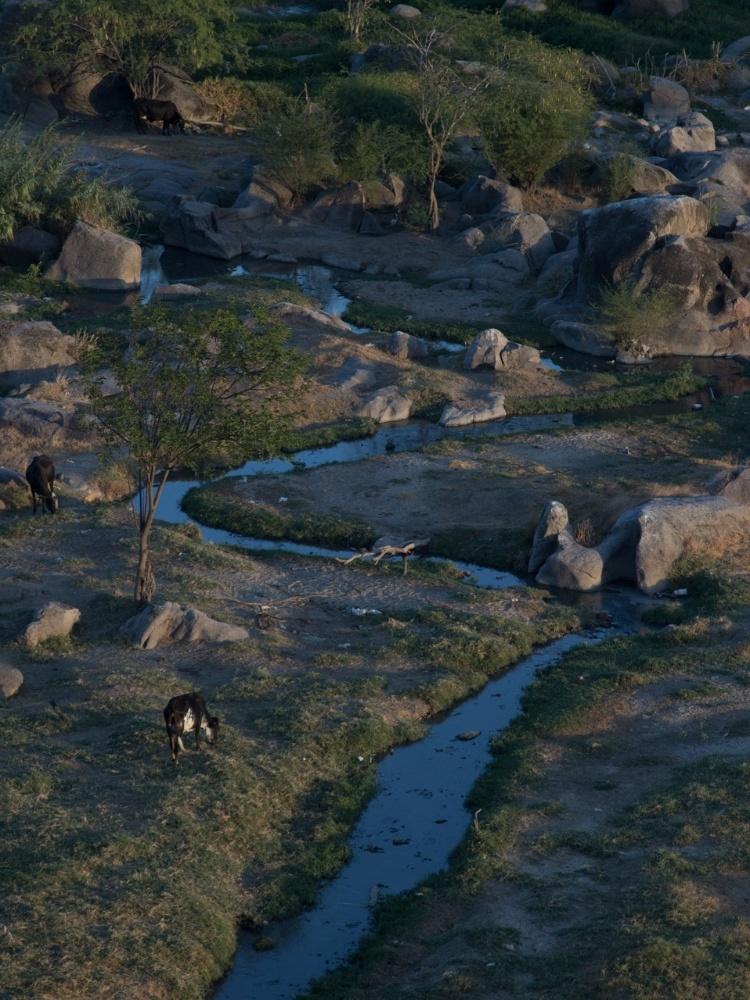 As fases do rio Capibaribe
