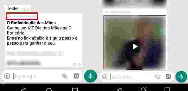 WhatsApp - atualização da versão beta avisa que mensagem foi encaminhada - Reprodução - Reprodução