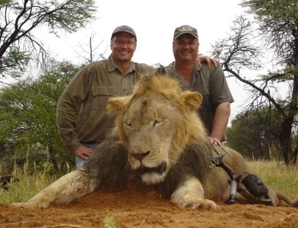 Humanos matam nove vezes mais animais que os predadores da natureza