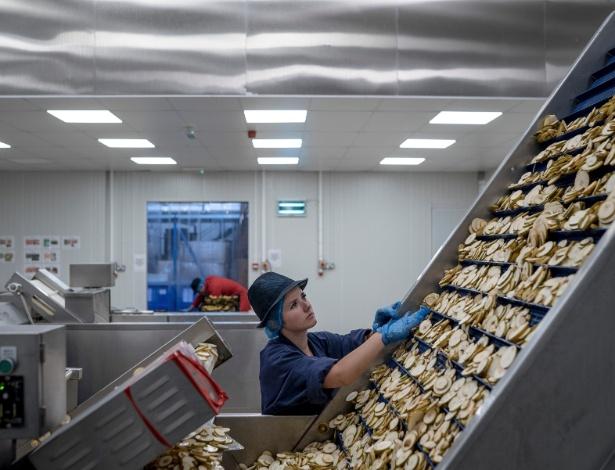 Funcionária coleta fatias de pera na fábrica Nim's Fruit Crisps em Sittingboure, na Inglaterra