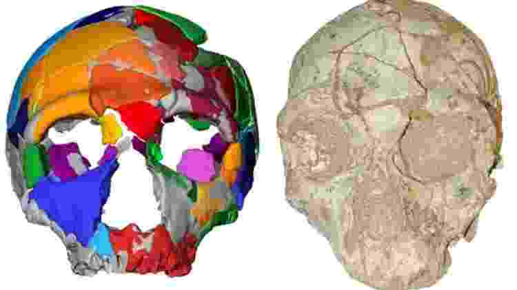 Apidima 2 parece ser de um neandertal e é um crânio mais novo que o moderno crânio humano encontrado junto - BBC - BBC