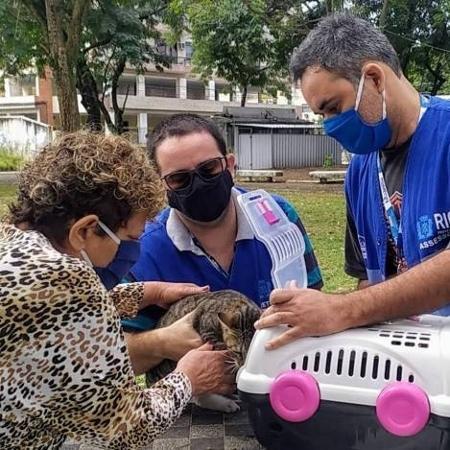 Gatos têm sido encontrado mortos na zona oeste do Rio de Janeiro - Glaucia Rafael/Divulgação SUPAN