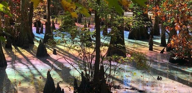 Parece até efeito de Photoshop. Mas esta foto tirada de um pântano no Estado da Virgínia é real