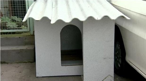 Casa de cachorro feita com placas de tubo de pasta de dente. A empresa Ecotop mói e prensa os tubos, que são transformados em placas que podem ser moldadas e transformadas em vários móveis