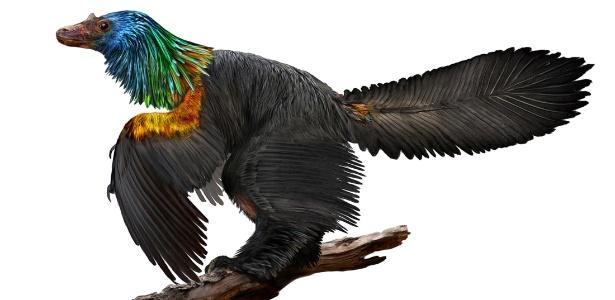 Ilustração do Caihong, dinossauro semelhante a um pássaro com penas coloridas