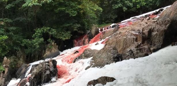 Avermelhado e coberto por espuma, aparência do Rio Vermelho assustou moradores - Corpo de Bombeiros/Divulgação