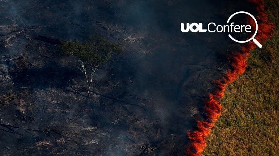 Arte UOL sobre foto de Bruno Kelly/Reuters