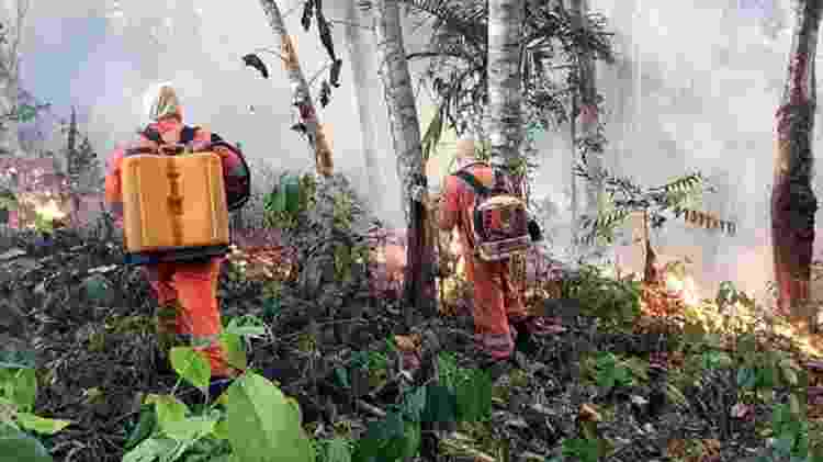 Houve um aumento de 84% nos focos de incêndios florestais em comparação com o ano passado - EPA - EPA