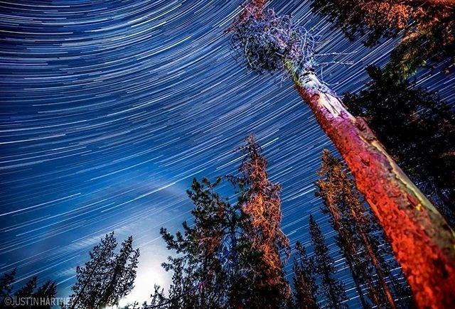 """13.jul.2016 - """"Esta pode ser uma das minhas fotos noturnas favoritas. Tem uma auréola lunar, árvores coloridas, muitos rastros de estrelas, tudo isso com apenas um click (na câmera)"""", diz Hartney em post feito na sua conta no Instagram. A imagem foi feita em Bend, no Oregon (EUA)"""