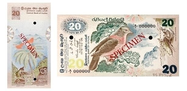Sri Lanka: Em 1979, foi lançada uma série de rúpias cingalesas homenageando a fauna e flora do país. Na de 20 rúpias, aparece um pombo-tocaz, um langur-de-cara-púrpura (espécie de macaco) e um lagarto com chifre de rinoceronte