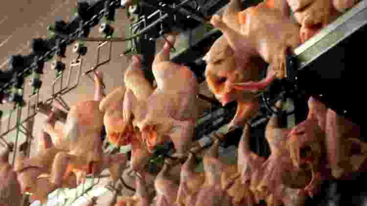 O controle sanitário da carne no Brasil foi colocado em xeque pela Operação Carne Fraca, que em 2017 apontou falhas na fiscalização federal de frigoríficos - ?Carne, Osso?/Repórter Brasil
