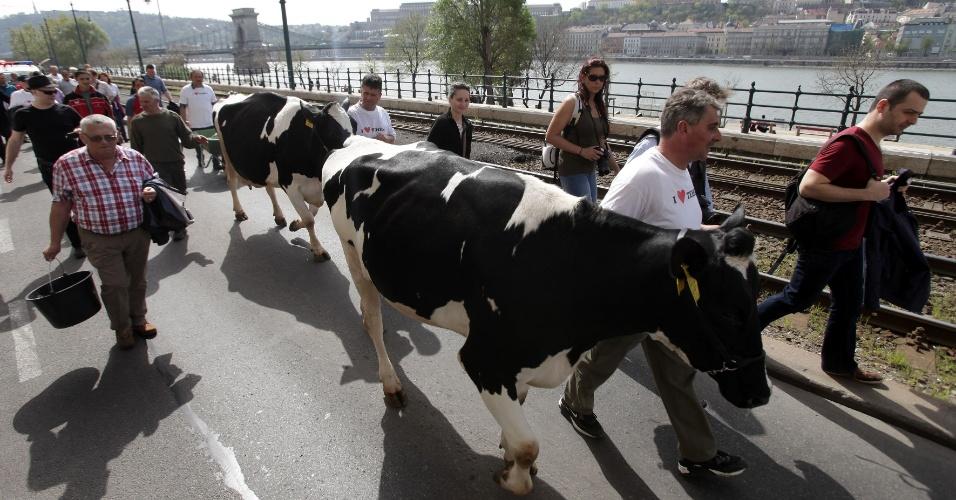 4.abril.2016 -  Produtores de leite húngaros realizam um protesto contra os baixos preços do leite e exigem melhores oportunidades de vendas em Budapeste, Hungria