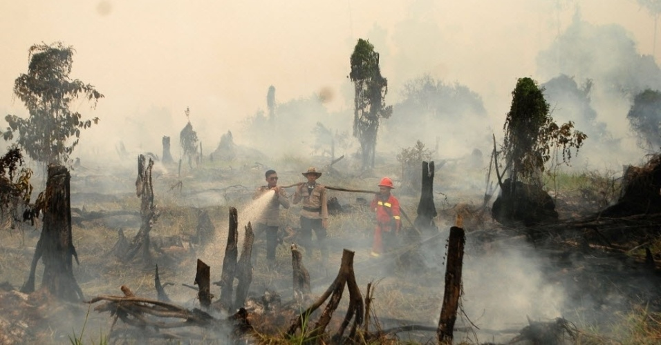 29.ago.2016 - Policiais e bombeiros combatem incêndio florestal na vila de Rokan Hulu, na ilha de Sumatra, na Indonésia