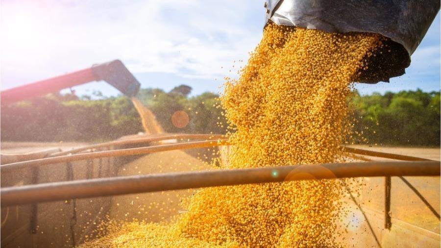 Alta de preços das commodities agrícolas e minerais foi um dos fatores que contribuiu para o bom desempenho do PIB no 1º trimestre, dizem economistas - Lucas Ninno/Getty Images