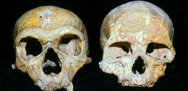 O crânio dos Neandertais (e) tinha órbitas maiores do que as dos humanos modernos (d); consequentemente, usavam mais o cérebro para processar informações visuais