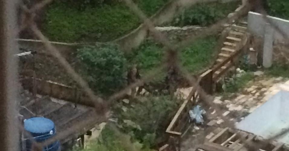 Policiais do Bope carregam homem baleado em região de mata do Morro da Babilônia