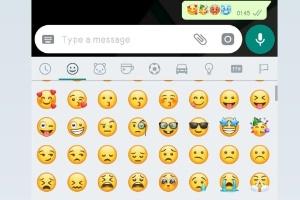 Ai que frio e calorão! WhatsApp ganhará novos emojis de sensação térmica (Foto: Reprodução/WhatsApp)