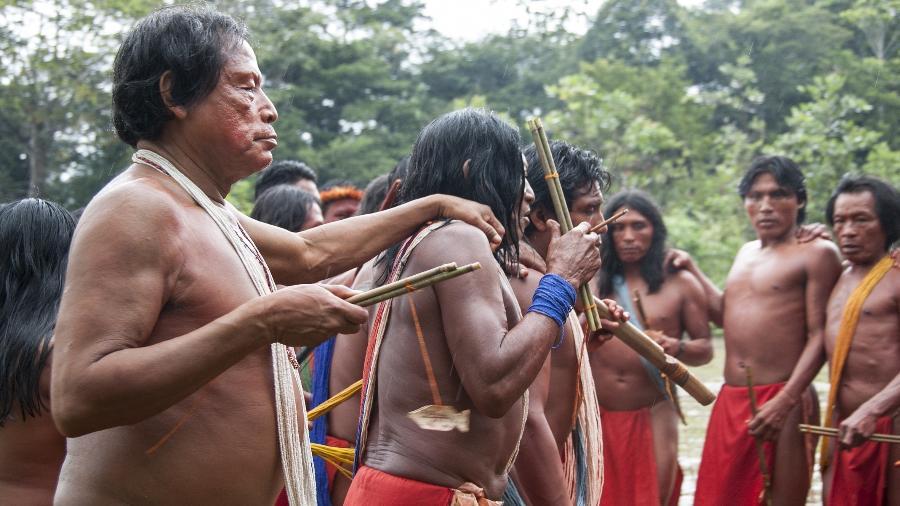Líder indígena da etnia waiãpi foi assassinado durante uma invasão de garimpeiros, no oeste do Amapá - Fiona Watson/Survival International