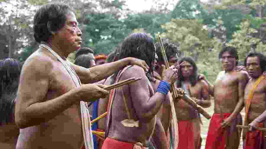 Etnia waiãpi vive no oeste do Amapá - Fiona Watson/Survival International