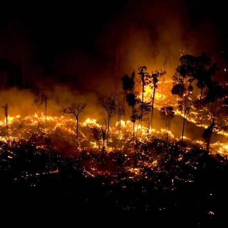 Foco de incêndio na Floresta Amazônia em São Félix do Xingu, no Pará, registrado pelo Greenpeace - Daniel Beltrá/Greenpeace