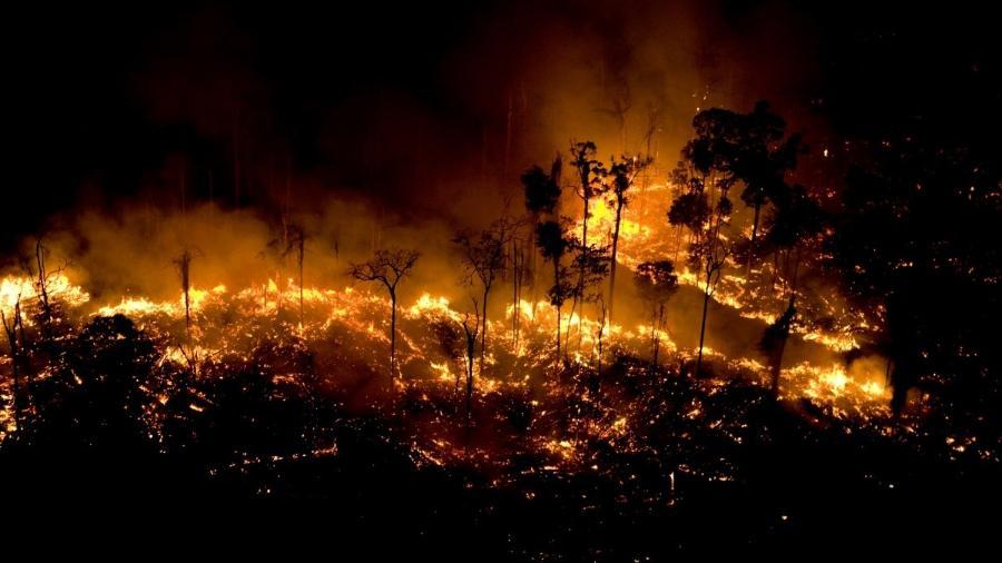 Resultado de imagem para queimada na amazonia