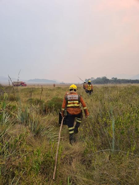 Bombeiros atuam na Chapada dos Veadeiros durante incêndio - Divulgação/CBMDF